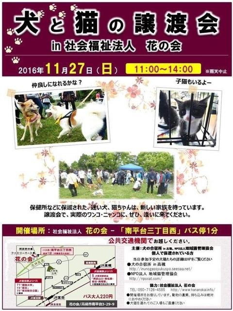 11.27花の会IMG_1664.JPG