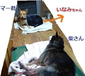 1_NEW.jpg