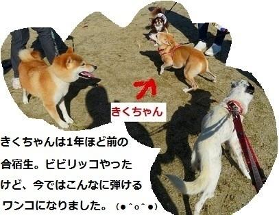 2_NEW.jpg