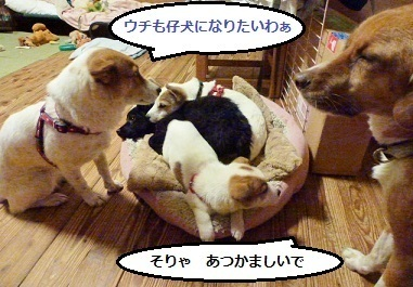 4_NEW.jpg