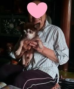とトト君母親IMG_20180906_163024.jpg