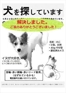 のこ解決チラシ白黒版.jpg