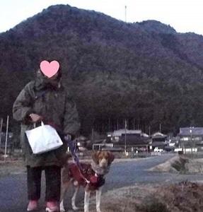 ピータン散歩IMG_4561.JPG