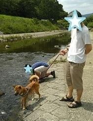 川キビDSC_0100.JPG