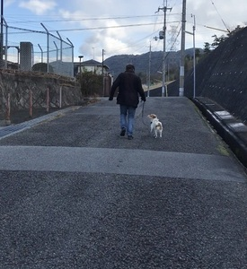 新君散歩IMG_0838.jpeg