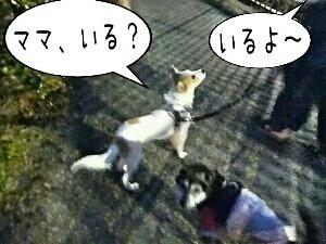 笑福06.jpg